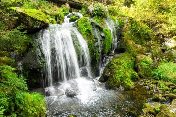 Kleiner Wasserfall in grüner Umgebung mit moosbewachsenen Steinen.