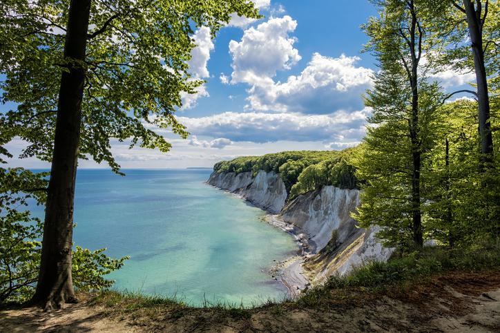 Blick von der Seite durch Bäume hindurch auf die Kreidefelsen, darunter das blaue Meer, darüber blauer Himmel mit einzelnen Wolken
