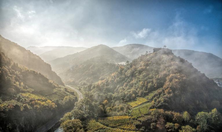 Blick durch leichten Nebel auf die Hügel der Eifel mit Wald, Weinreben und einer Straße, blauer Himmel
